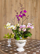 Обои Орхидеи Доски Ваза Цветы фото