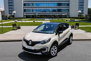 Обои Renault Белый Металлик 2016-17 Captur Latam Автомобили фото