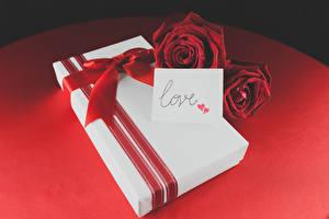 Обои Розы Праздники Цветной фон Красный Подарки Двое Бантик Цветы фото