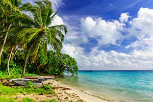 Фотография Пейзаж Тропический Побережье Лодки Море Пальмы Облачно Природа
