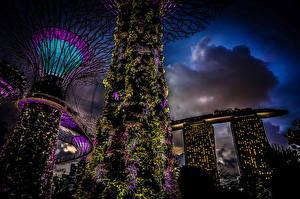 Обои Сингапур Сады Ночь Gardens by the Bay Природа фото
