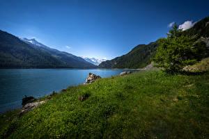 Обои Швейцария Озеро Горы Пейзаж Ель Трава Lake Marmorera Природа фото