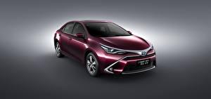 Обои Toyota Фиолетовый Металлик 2015 HEV Levin Автомобили фото