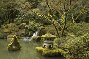 Фотографии США Парки Камни Водопады Мох Portland Japanese Gardens Oregon Природа