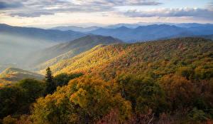 Обои США Пейзаж Горы Осень Леса North Carolina Природа фото