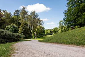 Обои Великобритания Парки Дороги Деревья Westonbirt Arboretum Природа фото