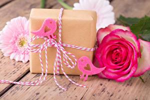 Фотография День святого Валентина Розы Герберы Птицы Доски Подарки Сердце Цветы