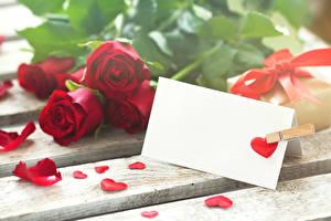 Обои День святого Валентина Розы Доски Красный Сердце Шаблон поздравительной открытки Цветы фото