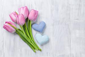 Обои День святого Валентина Тюльпаны Розовый Сердце Цветы фото