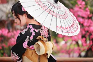Картинки Азиаты Зонт Кимоно Девушки