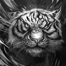 Обои Большие кошки Тигры Рисованные Черно белое Морда Усы Вибриссы Взгляд Хмурость Животные Фэнтези фото