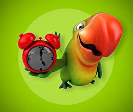 Фотография Птицы Попугаи Часы Будильник Цветной фон Клюв 3D Графика