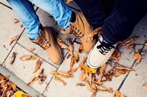 Картинка Ботинки Листья Ноги