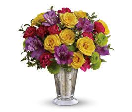 Обои Букеты Розы Альстрёмерия Хризантемы Гвоздики Белый фон Ваза Цветы картинки