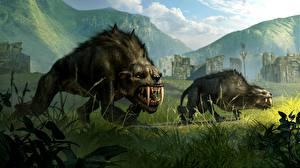 Фотографии Клыки Монстры Middle-earth: Shadow of Mordor Двое Трава Игры Фэнтези