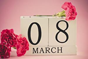Фотография Праздники Международный женский день Гвоздики Цветной фон Английский