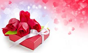 Обои Праздники Розы Сердце Подарки Красный Цветы