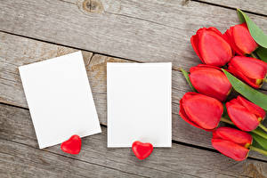 Фотографии Праздники Тюльпаны Доски Шаблон поздравительной открытки Сердце Красный Цветы