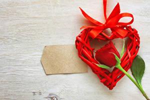 Фотографии Международный женский день Праздники Розы Красных Сердце Шаблон поздравительной открытки Бантики цветок