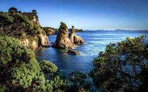 Картинка Новая Зеландия Море Побережье Скала Hahei Природа