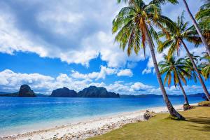 Обои для рабочего стола Филиппины Тропики Побережье Море Пальмы Облака Скала Природа
