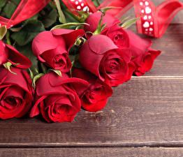Фотографии Розы Крупным планом Доски Красный Цветы