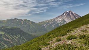 Фото Россия Горы Камчатка Кусты Природа