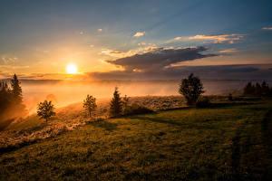 Картинка Пейзаж Рассветы и закаты Небо Трава Облака Солнце Природа