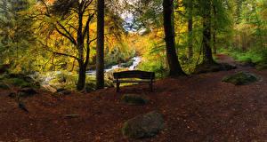 Фотографии Шотландия Лес Водопады Осенние Деревья Скамья Листья Dunkeld Perthshire Природа