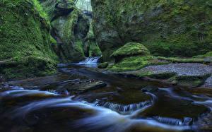 Фото Шотландия Водопады Скала Мох Finnich Glen Природа