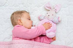 Обои Игрушки Младенцы Спит Дети фото