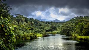 Фотографии Тропики Реки Леса Облака Samoa