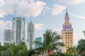 Картинка США Дома Небоскребы Небо Майами Пальмы Города