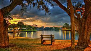 Фото США Парки Вечер Пруд Флорида Ствол дерева Скамейка HDR Tarpon Springs Природа
