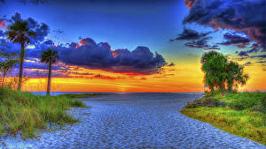 Фотография США Пейзаж Рассветы и закаты Небо HDR Флорида Пальмы Песок Облака Пляж Природа