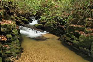 Фото США Водопады Камни Мох South Carolina Природа