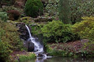 Обои Великобритания Парки Водопады Камень Кусты Bodnant Gardens Wales