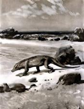 Картинки Древние животные Динозавры Zdenek Burian Черно белое Protosuchus Животные