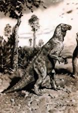 Фотографии Древние животные Динозавры Zdenek Burian Черно белое Iguanodon Животные