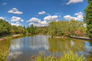Фотографии Австралия Парки Пруд Деревья Облака Hunter Valley Gardens Pokolbin