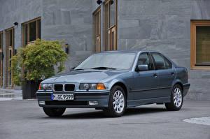 Картинка BMW Серые Металлик Седан 1995-98 323i Sedan машины