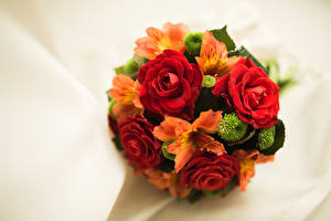 Фото Букеты Розы Альстрёмерия Цветы