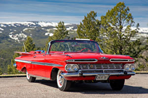 Фотографии Chevrolet Винтаж Красный Металлик Кабриолет 1959 Impala Convertible Машины