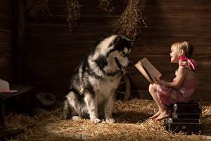 Картинки Собака Доски Девочка Книга Аляскинский маламут Чемодан Улыбается Солома Читает Дети Животные