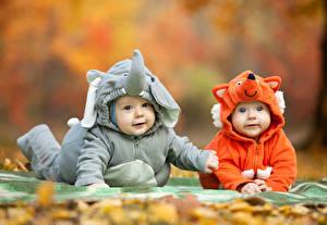 Фото Слоны Лисы Младенцы Униформа Взгляд Двое Дети