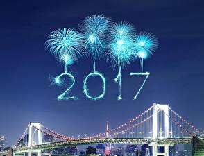 Картинки Фейерверк Мост Ночью 2017 Города