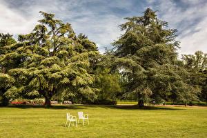Обои для рабочего стола Германия Парки Газон Стул Деревьев Nordpark Dusseldorf Природа