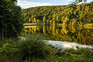 Картинка Германия Реки Леса Рыбалка Кусты lake Biggesee Attendorn Природа