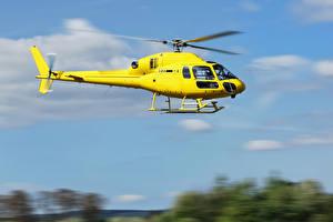 Фотографии Вертолеты Желтый Летящий Авиация