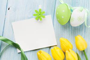 Обои Праздники Пасха Тюльпаны Доски Шаблон поздравительной открытки Яйца